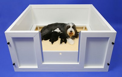 The last whelping box you'll ever need to buy